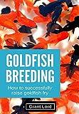 Goldfish Breeding: How to Successfully Raise Goldfish Fry