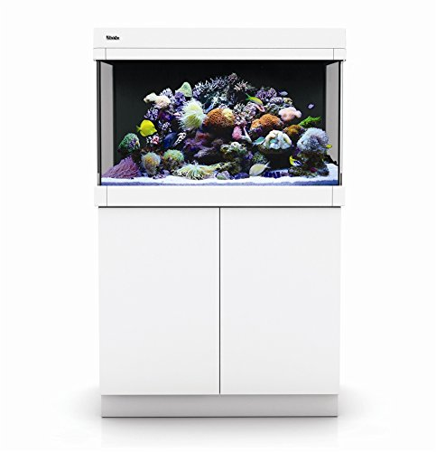 Red Sea Max C-250 Reef System, White