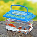 DSstyles Portable Pet Breeding Box,Transparent Tortoise Cylinder Goldfish Bowl Random Color 22 14 15cm