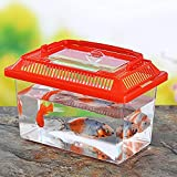 DishyKooker Home Portable Pet Breeding Box Transparent Tortoise Cylinder Goldfish Bowl Random Color 18 11 11cm Convenient Items