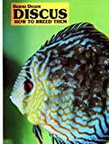 Discus: How to Breed Them