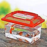 DSstyles Portable Pet Breeding Box Transparent Tortoise Cylinder Goldfish Bowl Random Color 18 11 11cm