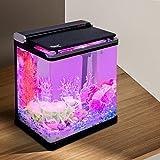 hygger Smart 4 Gallon Fish Tank Small Desk Aquarium Starter Kit with Lid, Filter Pump Filter Cartridges for Snail Tropical Gold Fish