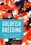 Goldfish Breeding: How to Successfully Raise Goldfish Fry