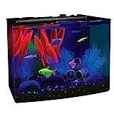 GloFish Crescent Aquarium Kit 5 Gallons, Includes Hidden Blue LED Light And Internal Filter