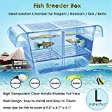 Warmtone Fish Hatchery: Floating Fish Breeding Box with Removable Grating