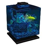 GloFish Aquarium Kit 1.5 Gallons, Easy Setup and Maintenance, Perfect Starter Tank, Model:29236