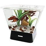 Tetra LED Betta Tank Kit 1 Gallon, Trapezoid aquarium With Base Lighting (24050)