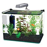 Penn-Plax Curved Corner Glass Aquarium Kit, Filter, LED Light, Float Glass for Maximum Viewing 10 Gallon