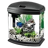 Aqueon LED Minibow Aquarium Starter Kits with LED Lighting, 1 Gallon, Black