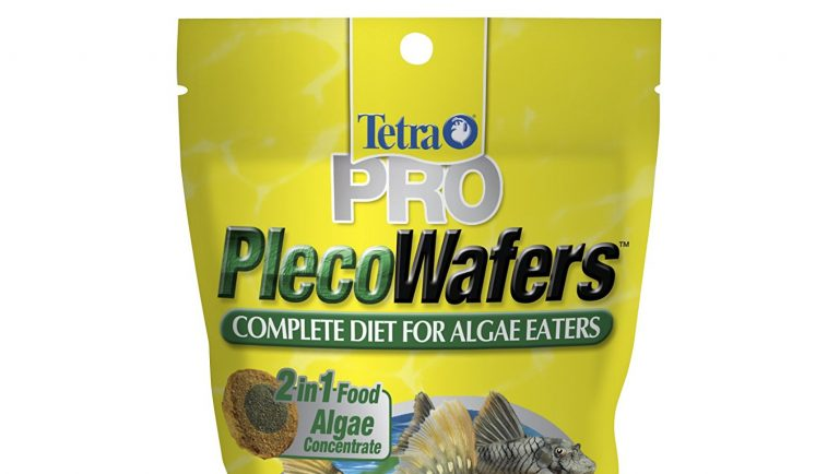 Best Algae Wafers Review
