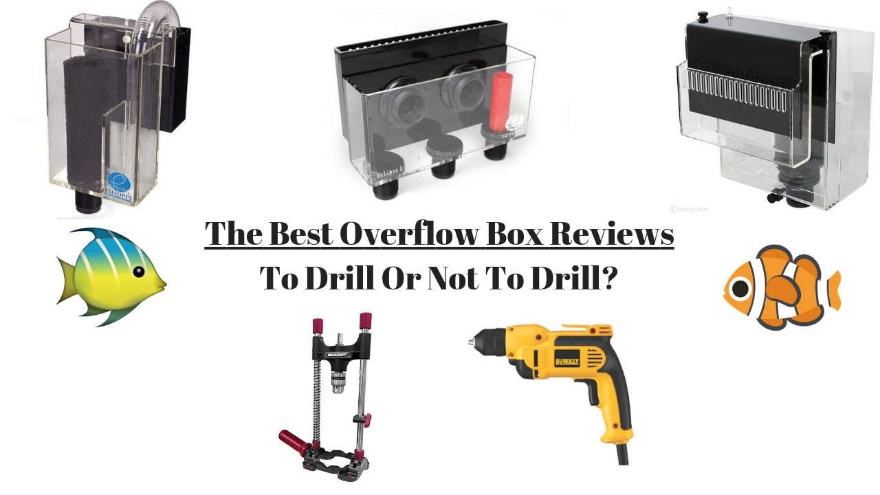 Best Hang-on Overflow Boxes Reviewed