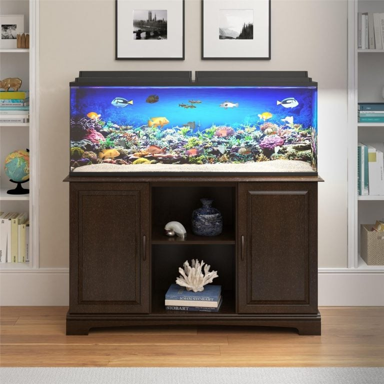 A Beginner's Guide To 75 Gallon Aquarium Setup